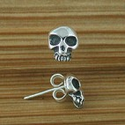 Small Skull Post Earrings